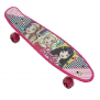 Outdoor Play – Barbie 21 inch Composite Skateboard with Light Up Wheels